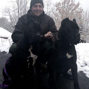 fede e cani corso